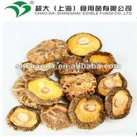 2012 dried shiitake mushroom grade A