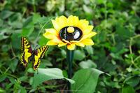 solar power flying toys solar swing flip flap dancing butterfly, garden decorative gift sun doll factory wholesale