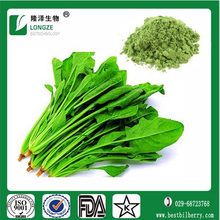 Spinach leaf Extract Spinacia oleracea extract (Bo Cai) with Vitamin K 4:1 10:1 20:1