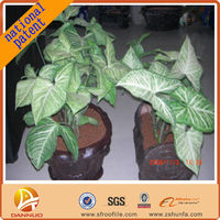 8 years of R&D the latest national patent Convenient Benefits environmental protection garden soil