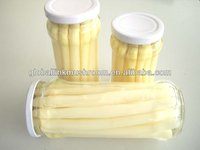 canned asparagus spear in glass jar