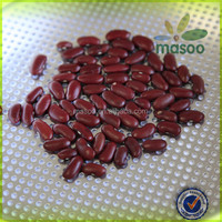200-220 pcs/100g Chinese Dark Red Kidney Bean Prices