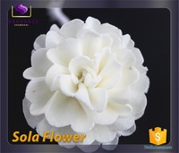 You can import form China Private custom sola flower