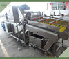 Industrial High output fruit and vegetable washer equipment