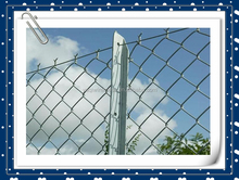 Home garden pvc coated / hot dipped galvanized chain link fence alibaba china manufacture supply