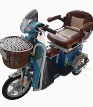 Golden Light Electric Passenger Tricycle(GEL03)