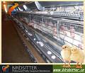 2015 New Style automatic reprodução gaiola de galinha em animais gaiolas
