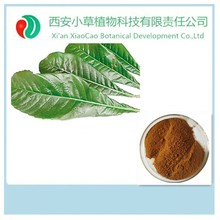 Professional Factory Supply Pure Natural cosmetic ingredients,loquat leaf extract ursolic acid