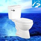 design de banheiros e wc siphonic wc