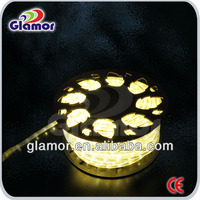 CE/SAA/GS/ Approved Led Flex Rope Light,LED Rope Light