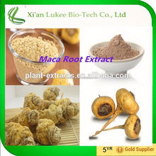 Improve sexual ability Maca Extract 20:1 with low price