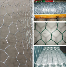 Chicken wire netting/poultry netting