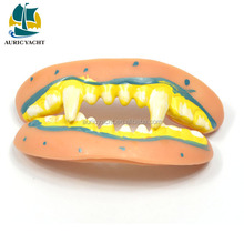 Direct Factory Price hot sale promotion vinyl halloween fake teeth for children