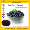 100%Natural Plant Extract/Acai Berry Extrat Powder