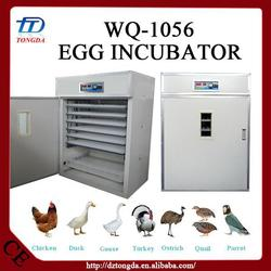 Brand new wholesale chicken supplies with high quality