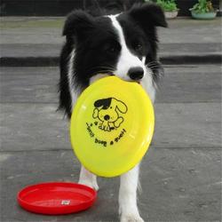 Professional Training Dog Toy Resistant Bite Plastic Dog Face Frisbee Toy Dog