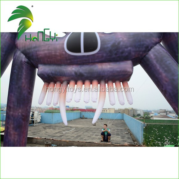 inflatable arch (11)