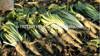/p-detail/Cichorium-intybusherbas-cichorium-las-ra%C3%ADces-de-hierbas-cichorium-a-base-de-hierbas-en-polvo-de-la-400001372052.html