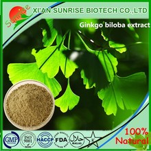 GMP manufacturer 100% natural ginkgo biloba extract