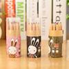Natural Wood Hot Sale Color Pencil V8318-18