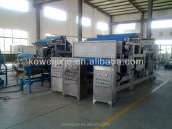 High quality fruit and vegetable industrial juice making machine