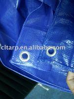 PE Tarpaulin Fabric Sheet