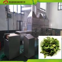 China High Working Efficiency Microwave Dryer Machine for broadleaf holly leaf/lotus leaf/green tea