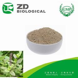 Pharmaceutical Raw Material Tulsi Extract