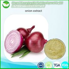 New Arrival Allium cepa extract / Onion Extract / Quercetin