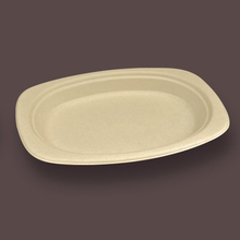 Hot sale eco disposable paper plate