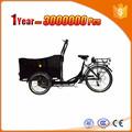 Carga 150 KG três rodas de bicicleta elétrica triciclo para fazer compras
