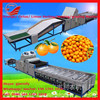 Fruit Farm Equipments High Accuracy Stainless Steel Fruit Grading Machine