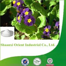 100% bulk pure stevia extract powder