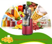 Industrial Apple Juicer /Grape Juice Extractor for Sale