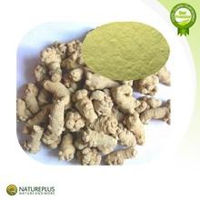 Factory price supply 100% Natural Radix Notoginseng extract powder./Panax Notoginseng P.E.