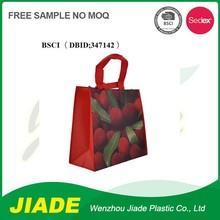 Full color marketing using shopping bag/non woven eco bag/Non woven pp promotion bags