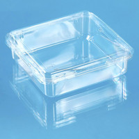 square clear hard plastic fruit food container box