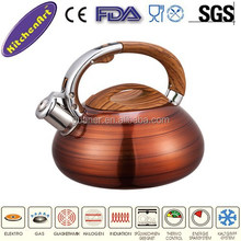 stainless steel color changing kettle