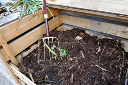Bioculture for best composting of kitchen ad garden organic wastes