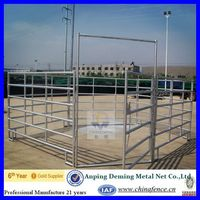 China Suppier Galvanized Horse Fence(China/Manufactrer/Golden Suppier)