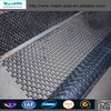 plastic flat netting (high quality low price)