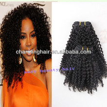 Beauty Forever Hot Sale Peruvian Kinky Curly Virgin Human Hair Weaves Can Be Dyed Hair Products