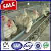 High quality chicken cage from Anping