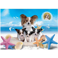 Hot Design Lovely 3D Lenticular Picture Of Dog