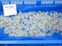 PUD Shrimps