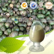 tea leaf Saponin extract organic quality