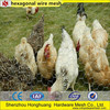 hexagonal wire mesh for Poultry or Rabbit