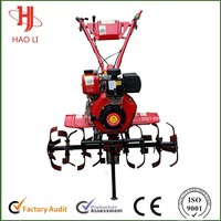 4.05 kw HaoLi brand China farmland diesel engine for tiller