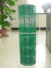 Hot-dipped galvanized dutch nets(JH-55)