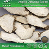 Herbal & Plant Extract Dong Quai Extract Powder Ligustilides 1%